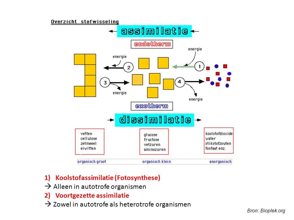 1)Koolstofassimilatie (Fotosynthese)  Alleen in autotrofe organismen 2) Voortgezette assimilatie  Zowel in autotrofe als heterotrofe organismen Bron
