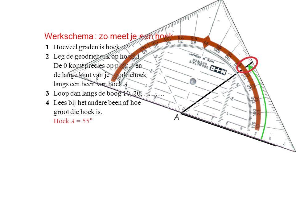 Werkschema : zo meet je een hoek 1Hoeveel graden is hoek A .