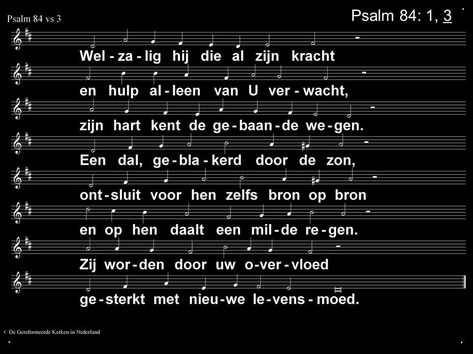 .... Zingen: Gezang 119: 1, 5 (GK 32) Gebed Collecte Zingen: Psalm 89: 7, 8 Zegen