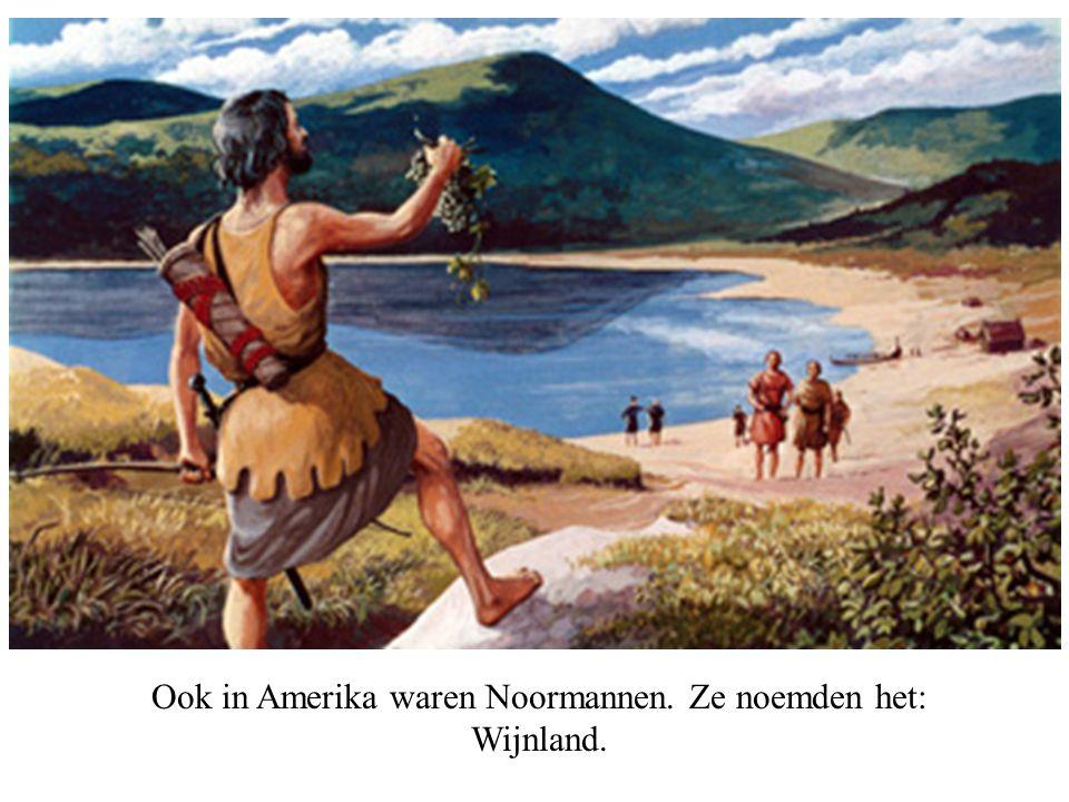Ook in Amerika waren Noormannen. Ze noemden het: Wijnland.