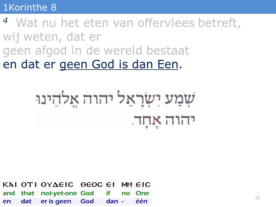 1Korinthe 8 4 Wat nu het eten van offervlees betreft, wij weten, dat er geen afgod in de wereld bestaat en dat er geen God is dan Een.