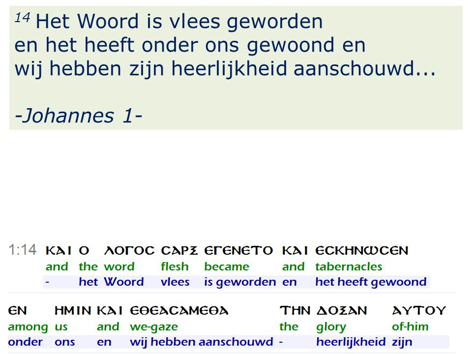 28 14 Het Woord is vlees geworden en het heeft onder ons gewoond en wij hebben zijn heerlijkheid aanschouwd...