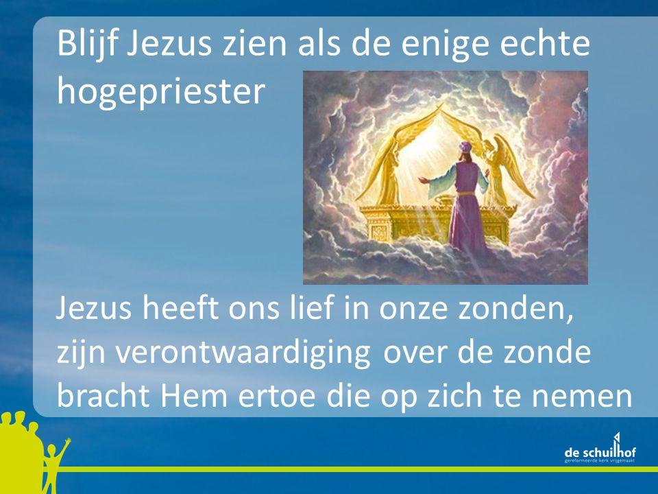 Blijf Jezus zien als de enige echte hogepriester Jezus heeft ons lief in onze zonden, zijn verontwaardiging over de zonde bracht Hem ertoe die op zich
