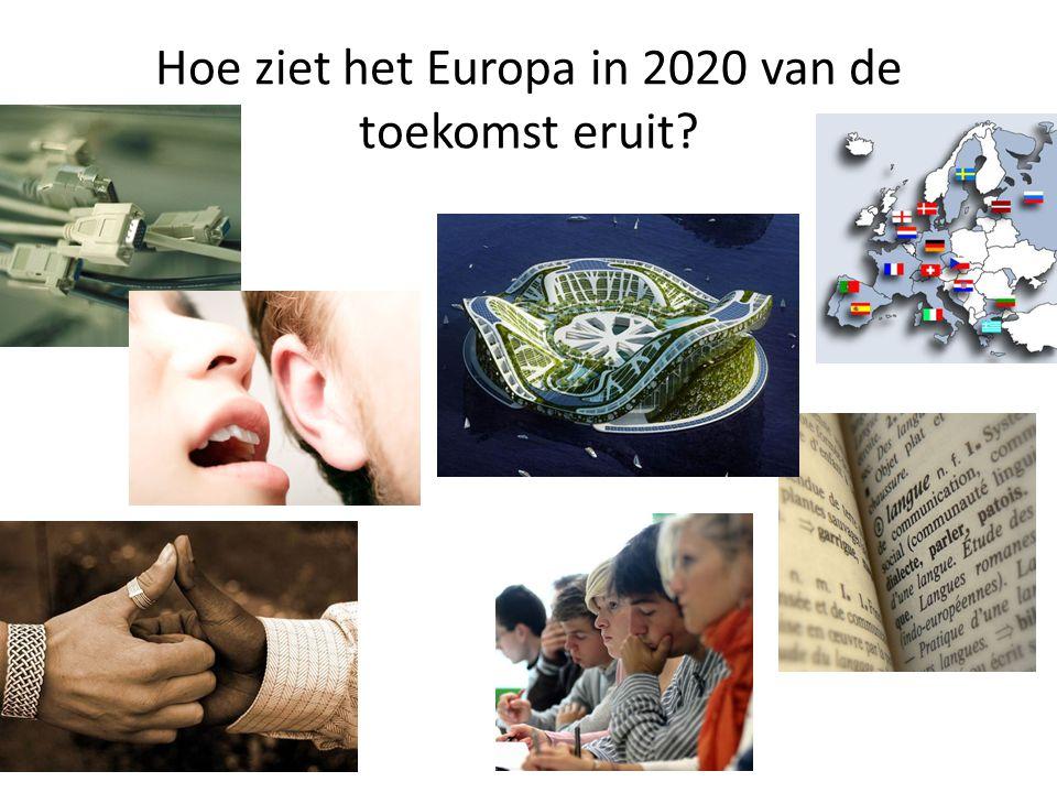 Doel Vision 2020: Leren over de toekomst van Europa (vision 2020) Activeren Europees burgerschap Uiten en bediscussiëren van meningen Meer leren over Europese Politiek Meer leren over European Youth Parliament