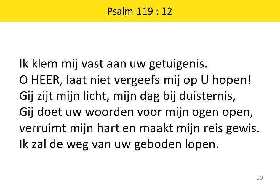 Ik klem mij vast aan uw getuigenis. O HEER, laat niet vergeefs mij op U hopen! Gij zijt mijn licht, mijn dag bij duisternis, Gij doet uw woorden voor