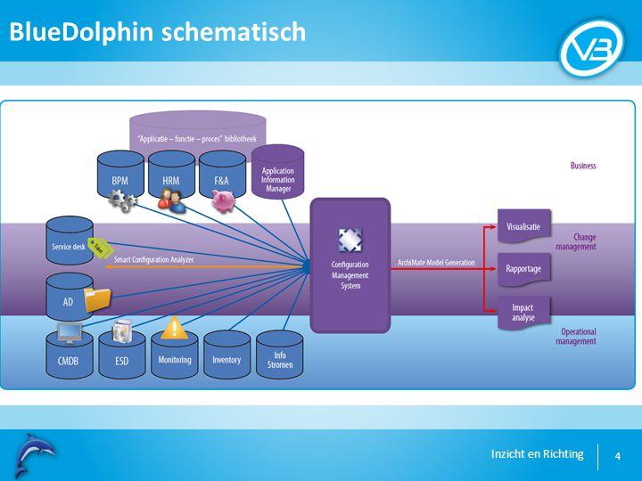 Inzicht en Richting BlueDolphin schematisch 4