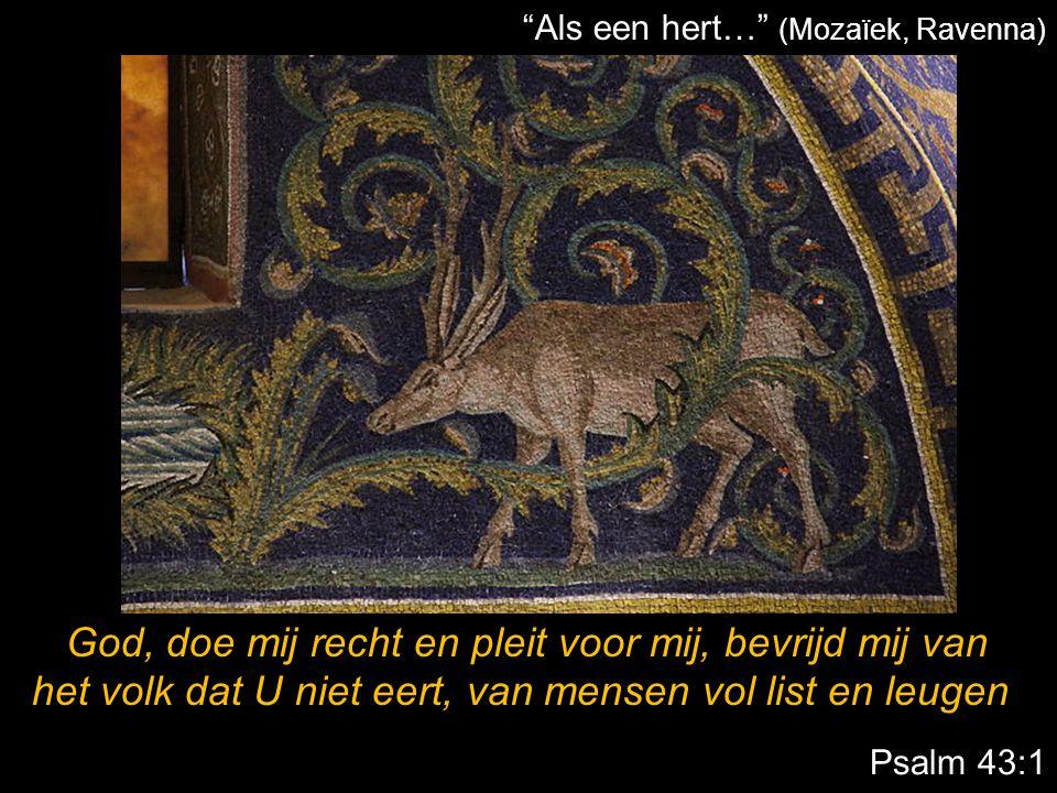 """Psalm 43:1 """"Als een hert…"""" (Mozaïek, Ravenna) God, doe mij recht en pleit voor mij, bevrijd mij van het volk dat U niet eert, van mensen vol list en l"""