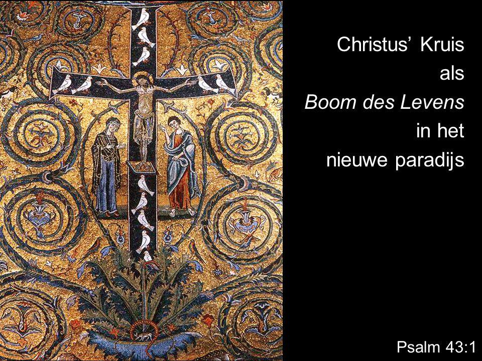 Psalm 43:1 Christus' Kruis als Boom des Levens in het nieuwe paradijs