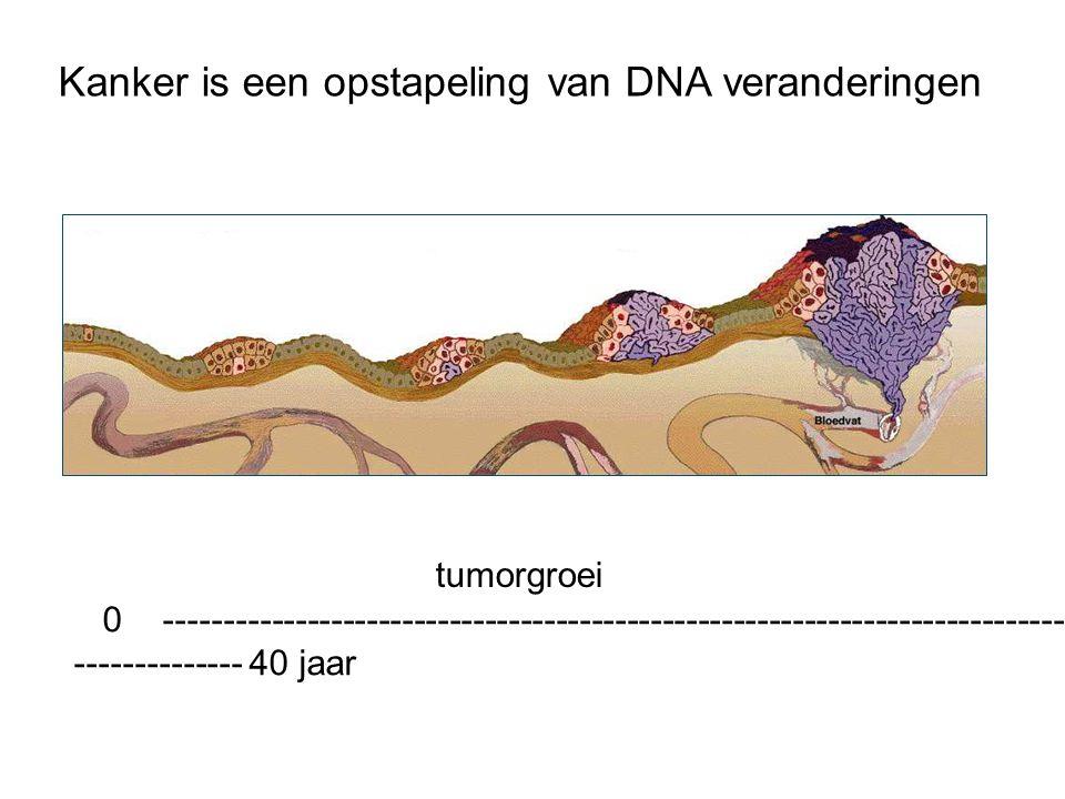 0 -------------------------------------------------------------------------------- -------------- 40 jaar tumorgroei Kanker is een opstapeling van DNA