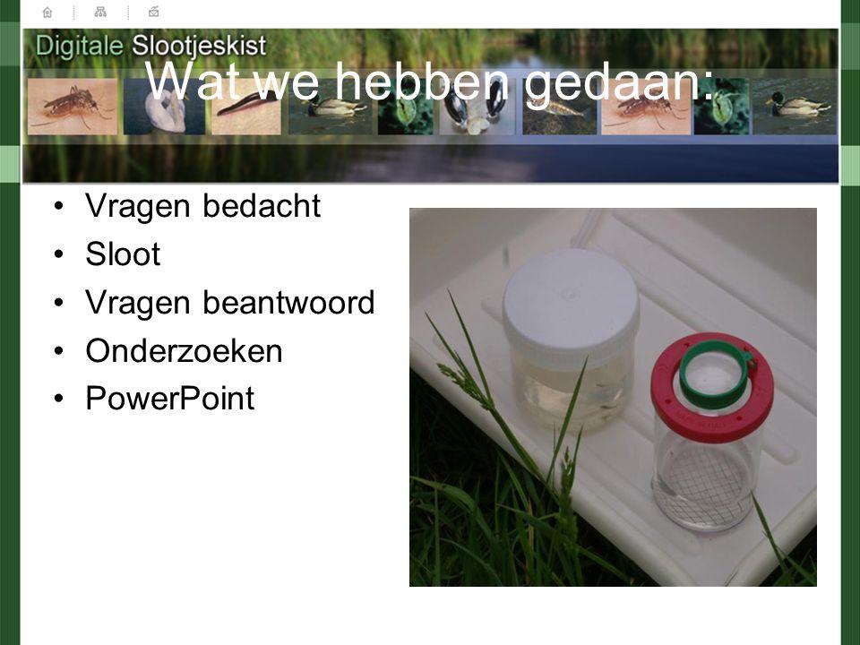 Wat we hebben gedaan: Vragen bedacht Sloot Vragen beantwoord Onderzoeken PowerPoint