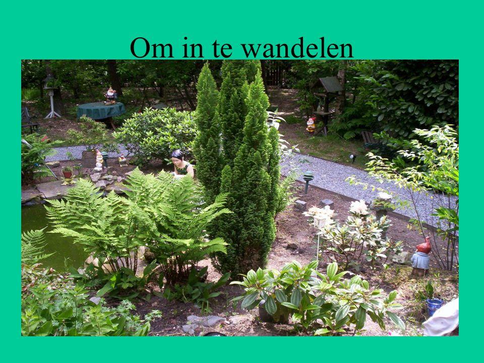 Een tuin met knusse bankjes