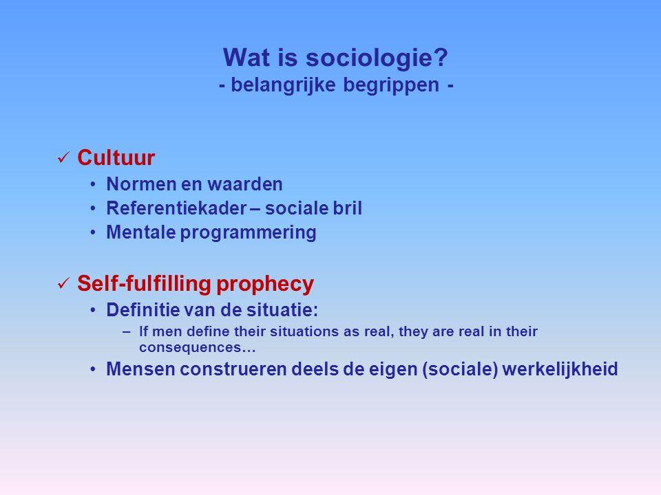 Wat is sociologie.