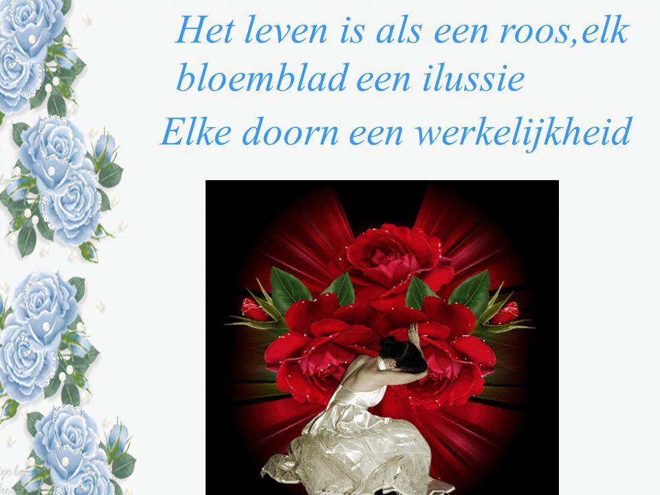 Het leven is als een roos,elk bloemblad een ilussie Elke doorn een werkelijkheid