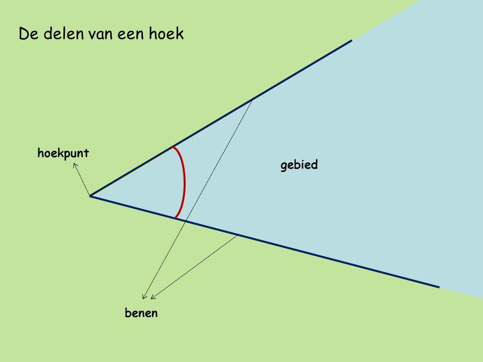 De delen van een hoek hoekpunt benen gebied
