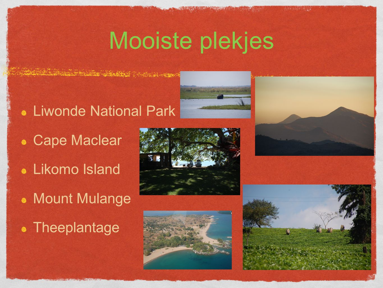 Mooiste plekjes Liwonde National Park Cape Maclear Likomo Island Mount Mulange Theeplantage