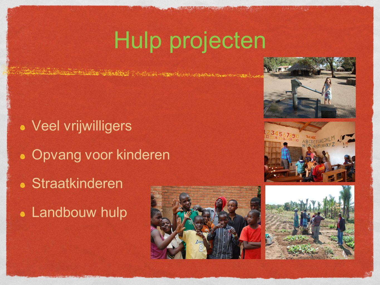 Hulp projecten Veel vrijwilligers Opvang voor kinderen Straatkinderen Landbouw hulp