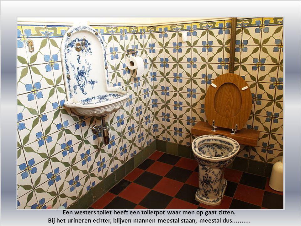 Een westers toilet heeft een toiletpot waar men op gaat zitten.