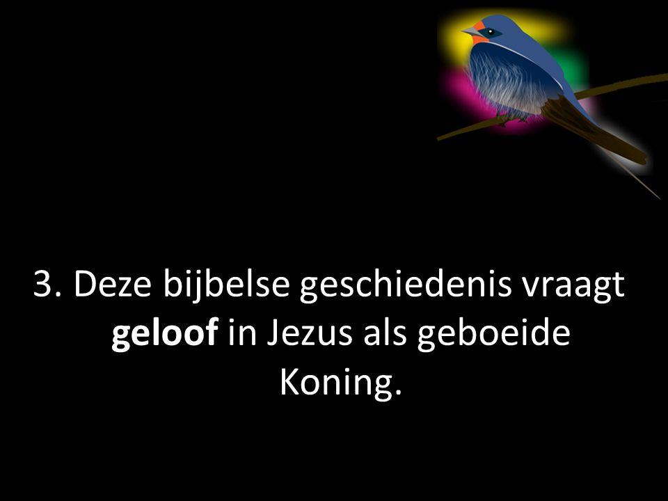 3. Deze bijbelse geschiedenis vraagt geloof in Jezus als geboeide Koning.