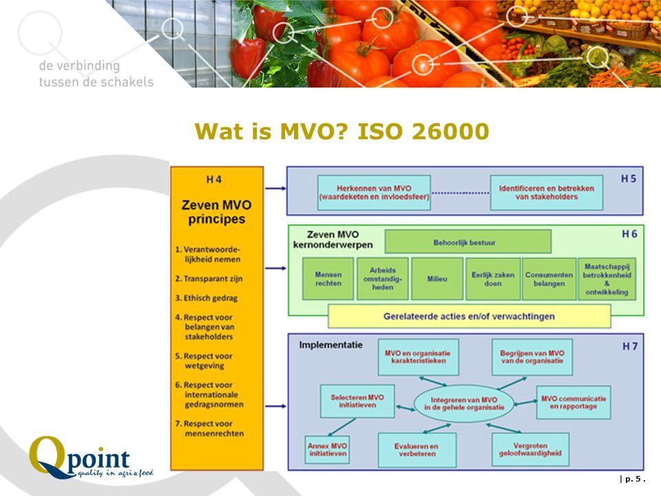 Wat is MVO? ISO 26000 | p. 5.