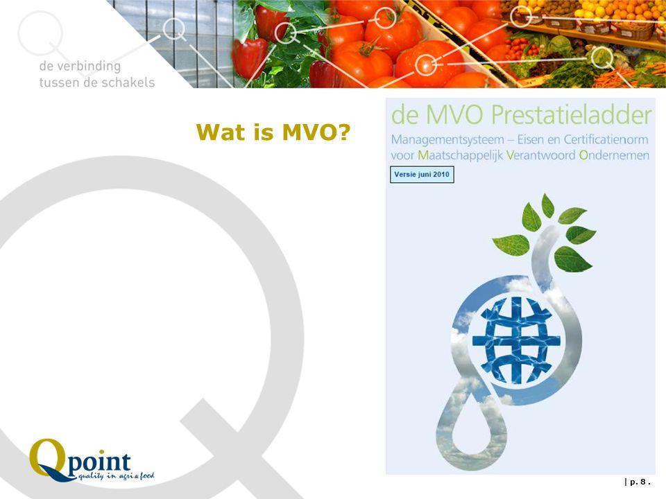 Wat is MVO? | p. 8.