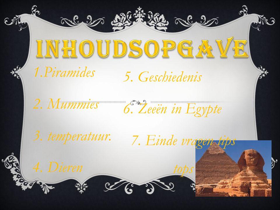 1.Piramides 2. Mummies 3. temperatuur. 4. Dieren 5. Geschiedenis 6. Zeeën in Egypte 7. Einde vragen tips tops