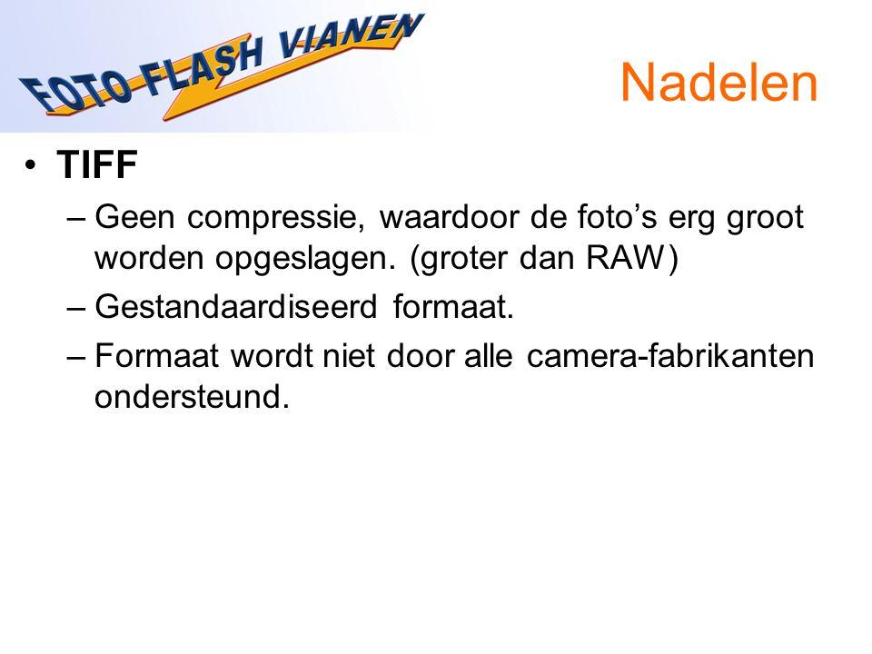 Nadelen TIFF –Geen compressie, waardoor de foto's erg groot worden opgeslagen. (groter dan RAW) –Gestandaardiseerd formaat. –Formaat wordt niet door a