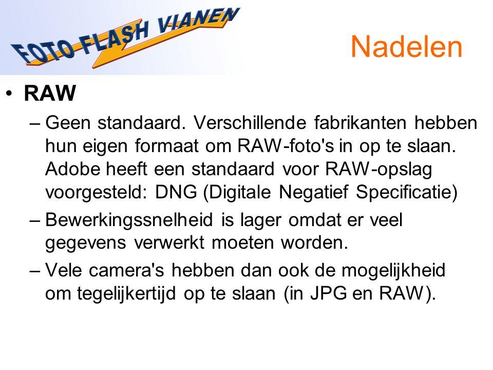Nadelen RAW –Geen standaard. Verschillende fabrikanten hebben hun eigen formaat om RAW-foto's in op te slaan. Adobe heeft een standaard voor RAW-opsla