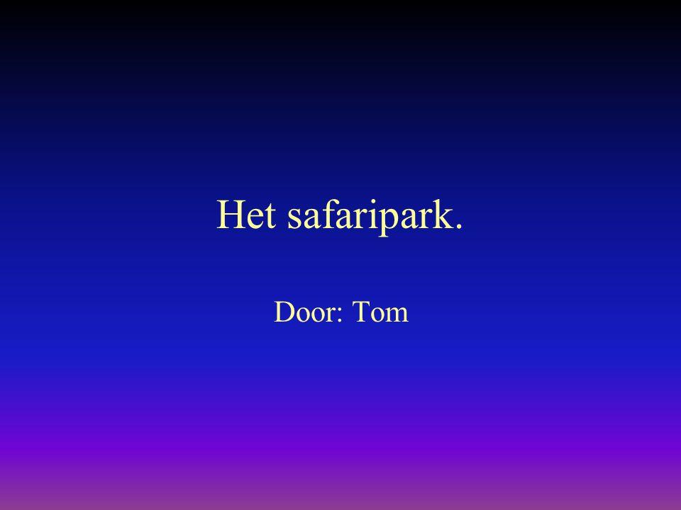 Het safaripark. Door: Tom