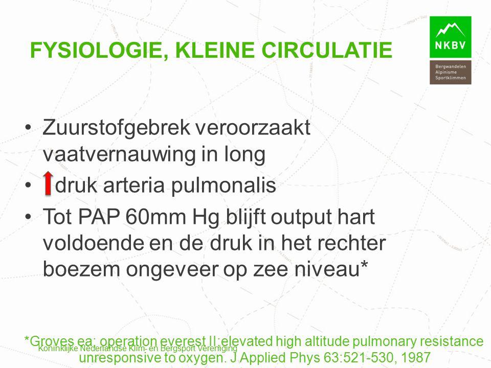 Koninklijke Nederlandse Klim- en Bergsport Vereniging FYSIOLOGIE, KLEINE CIRCULATIE Zuurstofgebrek veroorzaakt vaatvernauwing in long druk arteria pul