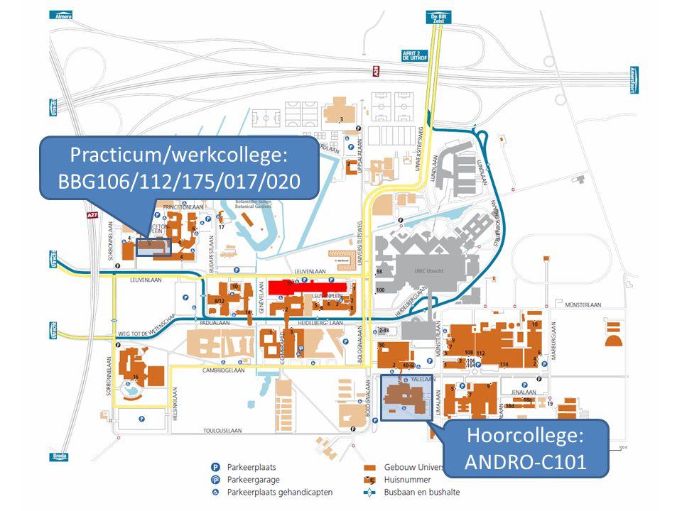 Practicum/werkcollege: BBG106/112/175/017/020 Hoorcollege: ANDRO-C101