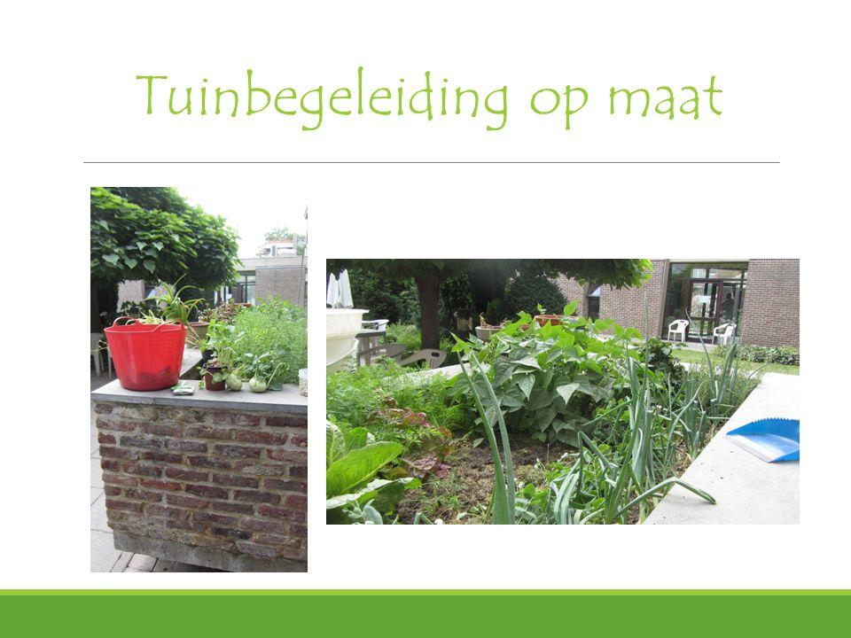 Tuinbegeleiding op maat