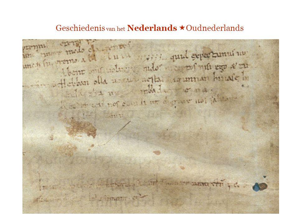 Oudnederlands: kenmerken Enkele elementen uit het Ingweoons kustdialect Bijv.: meervoud op -s West-Vlaams: arms, honds, broods AN: appels, zoons
