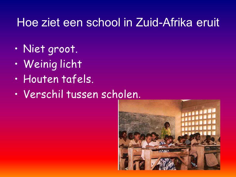 Hoe ziet een school in Zuid-Afrika eruit Niet groot. Weinig licht Houten tafels. Verschil tussen scholen.