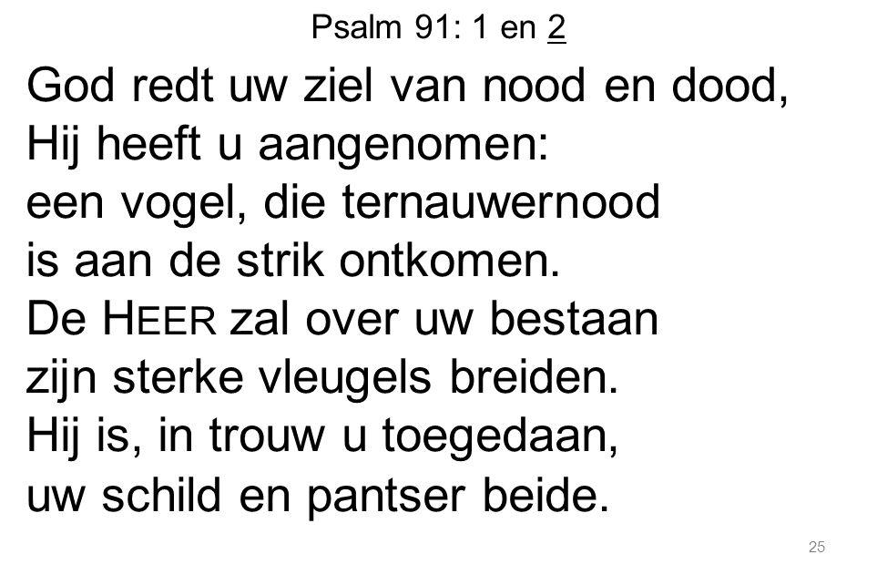 Psalm 91: 1 en 2 God redt uw ziel van nood en dood, Hij heeft u aangenomen: een vogel, die ternauwernood is aan de strik ontkomen.