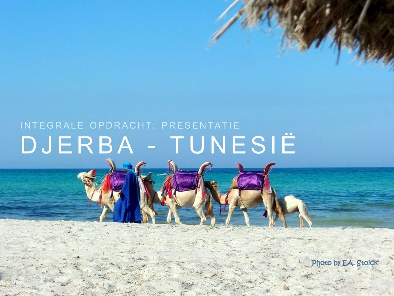 DJERBA - TUNESIË INTEGRALE OPDRACHT: PRESENTATIE