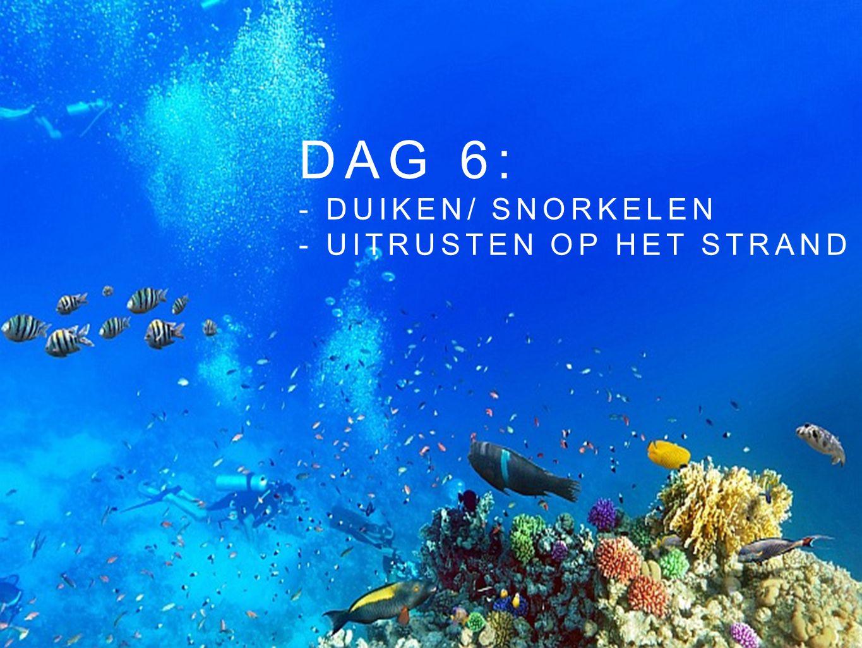 DAG 6: - DUIKEN/ SNORKELEN - UITRUSTEN OP HET STRAND