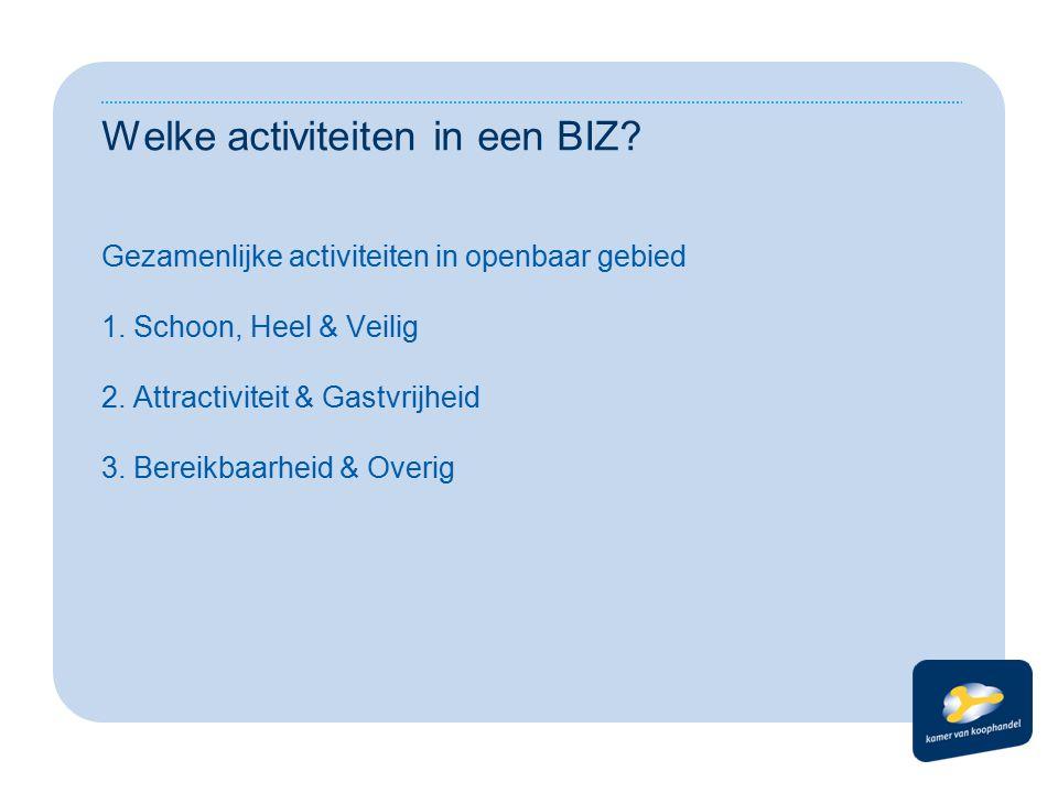 Welke activiteiten in een BIZ. Gezamenlijke activiteiten in openbaar gebied 1.