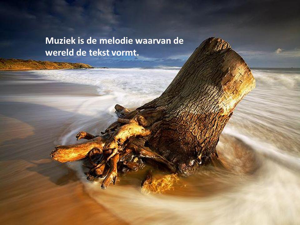Muziek is de melodie waarvan de wereld de tekst vormt.