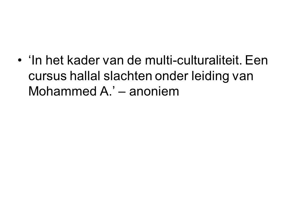 'In het kader van de multi-culturaliteit.