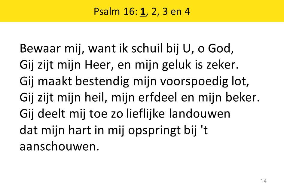 Bewaar mij, want ik schuil bij U, o God, Gij zijt mijn Heer, en mijn geluk is zeker. Gij maakt bestendig mijn voorspoedig lot, Gij zijt mijn heil, mij
