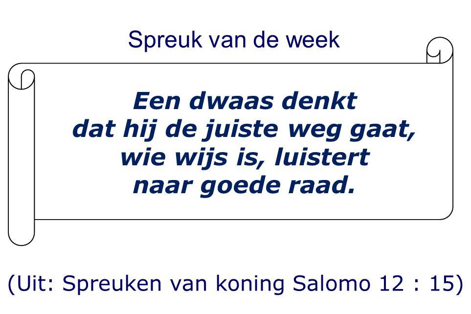 Wij feliciteren de leden van de Rehobothkerk (Gereformeerde Kerk Vrijgemaakt Utrecht-Centrum) met het bericht dat ds.