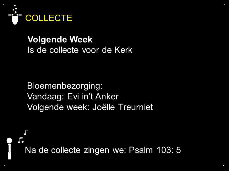 .... COLLECTE Volgende Week Is de collecte voor de Kerk Bloemenbezorging: Vandaag: Evi in't Anker Volgende week: Joëlle Treurniet Na de collecte zinge
