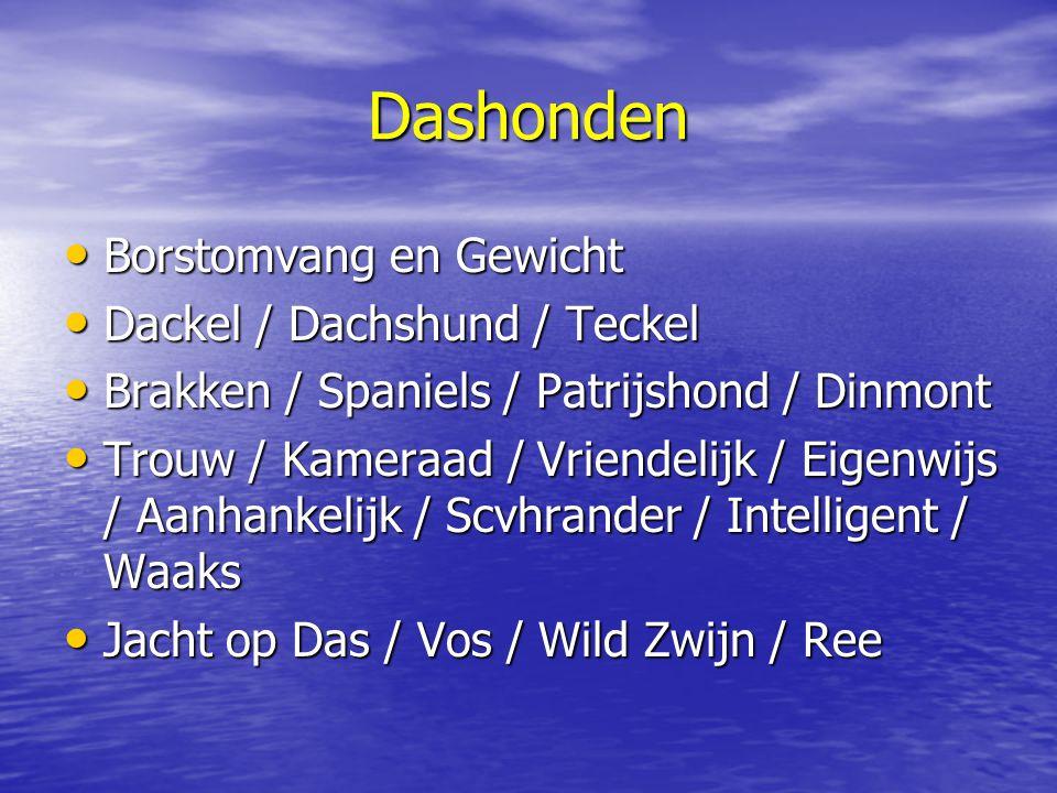 Dashonden Borstomvang en Gewicht Borstomvang en Gewicht Dackel / Dachshund / Teckel Dackel / Dachshund / Teckel Brakken / Spaniels / Patrijshond / Din