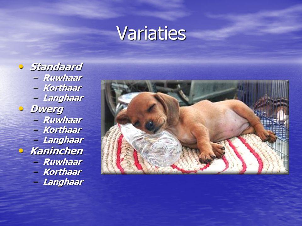 Variaties Standaard Standaard –Ruwhaar –Korthaar –Langhaar Dwerg Dwerg –Ruwhaar –Korthaar –Langhaar Kaninchen Kaninchen –Ruwhaar –Korthaar –Langhaar