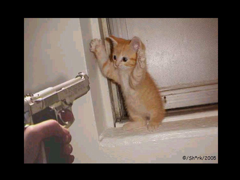Ik kwam beneden aan en alleen de deur zat nog tussen die inbreker en mij...