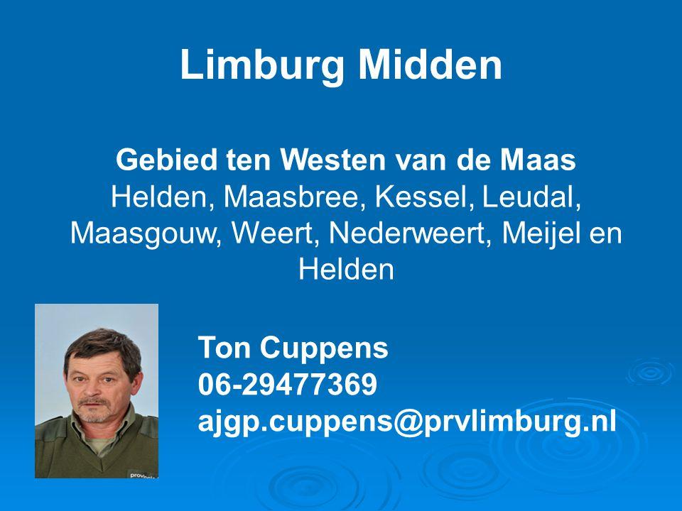 Limburg Midden Gebied ten Westen van de Maas Helden, Maasbree, Kessel, Leudal, Maasgouw, Weert, Nederweert, Meijel en Helden Ton Cuppens 06-29477369 a