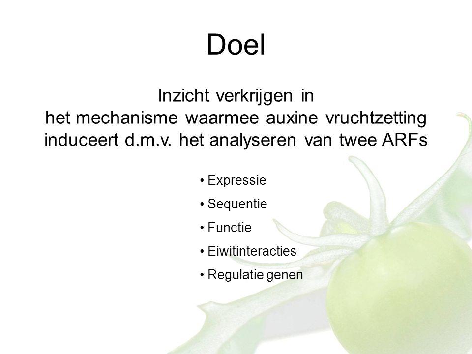 Doel Inzicht verkrijgen in het mechanisme waarmee auxine vruchtzetting induceert d.m.v.