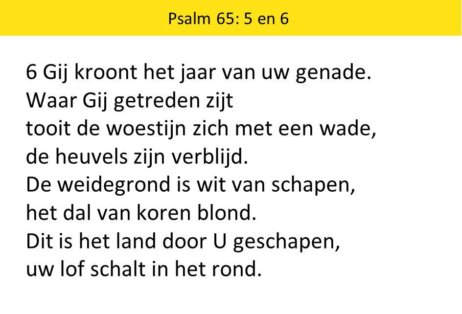 Psalm 65: 5 en 6 6 Gij kroont het jaar van uw genade. Waar Gij getreden zijt tooit de woestijn zich met een wade, de heuvels zijn verblijd. De weidegr