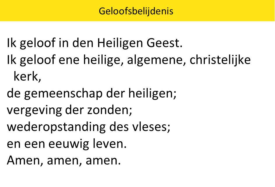 Geloofsbelijdenis Ik geloof in den Heiligen Geest. Ik geloof ene heilige, algemene, christelijke kerk, de gemeenschap der heiligen; vergeving der zond