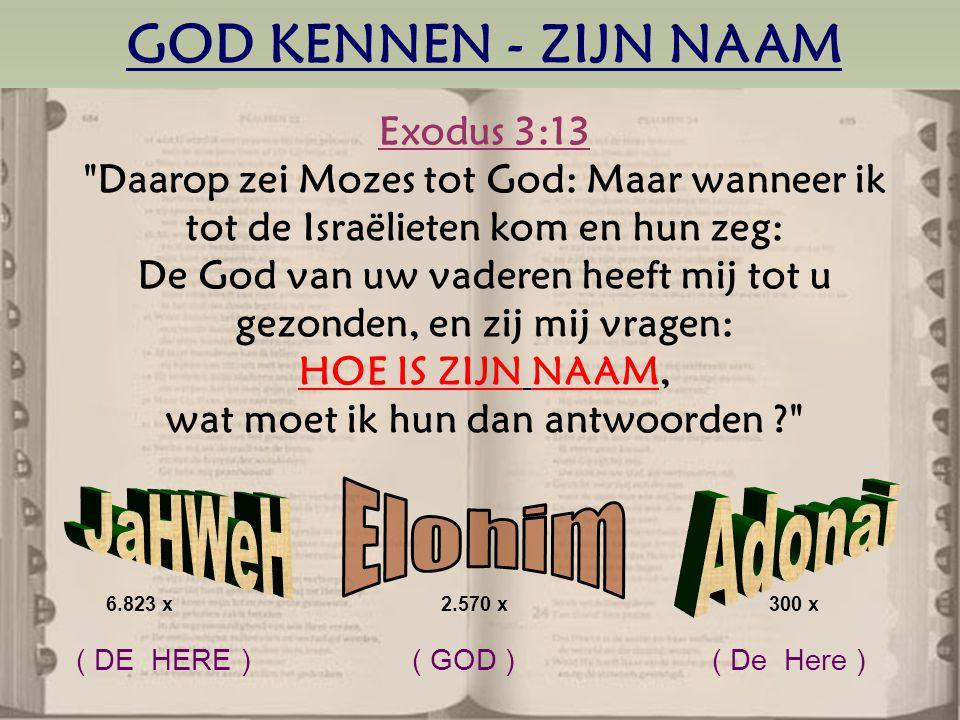 GOD KENNEN - ZIJN NAAM Exodus 3:13 Daarop zei Mozes tot God: Maar wanneer ik tot de Israëlieten kom en hun zeg: De God van uw vaderen heeft mij tot u gezonden, en zij mij vragen: HOE IS ZIJN NAAM, wat moet ik hun dan antwoorden 6.823 x 2.570 x300 x ( DE HERE ) ( GOD ) ( De Here )